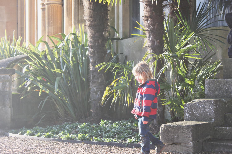 waddesdon-manor-winter-sun.jpg