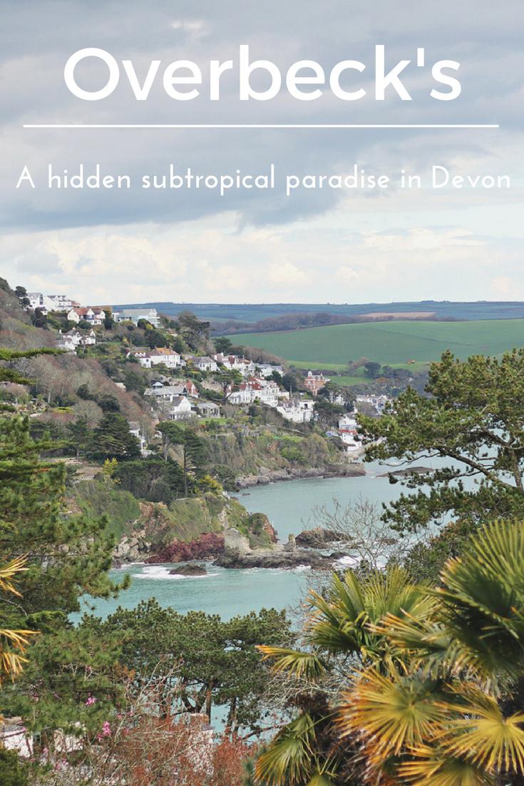overbecks-a-hidden-subtropical-paradise-in-devon