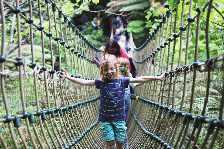 lost-gardens-of-heligan-rope-bridge
