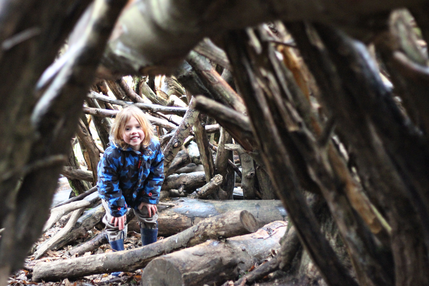 winter den building in the forest