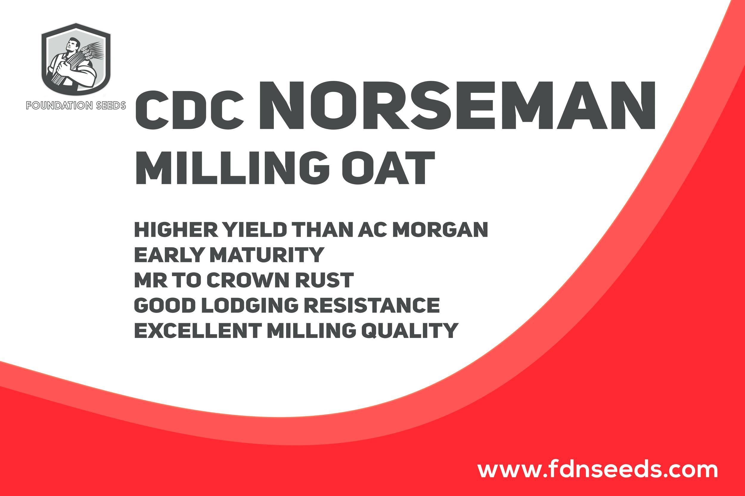 CDC Norseman Milling Oat