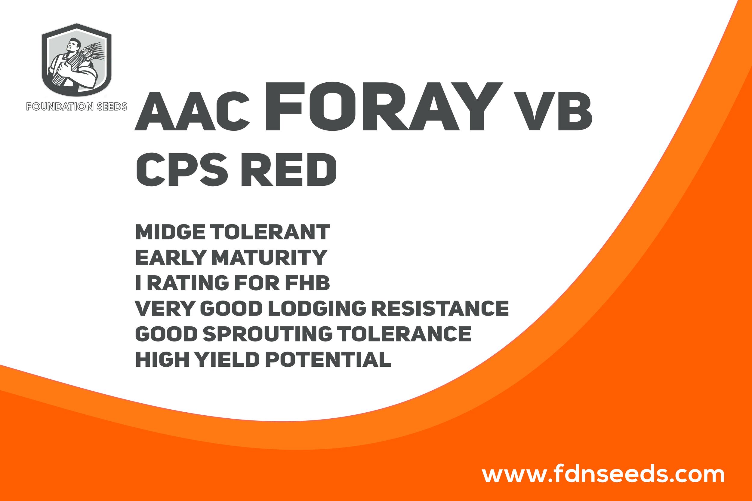 AAC Foray VB