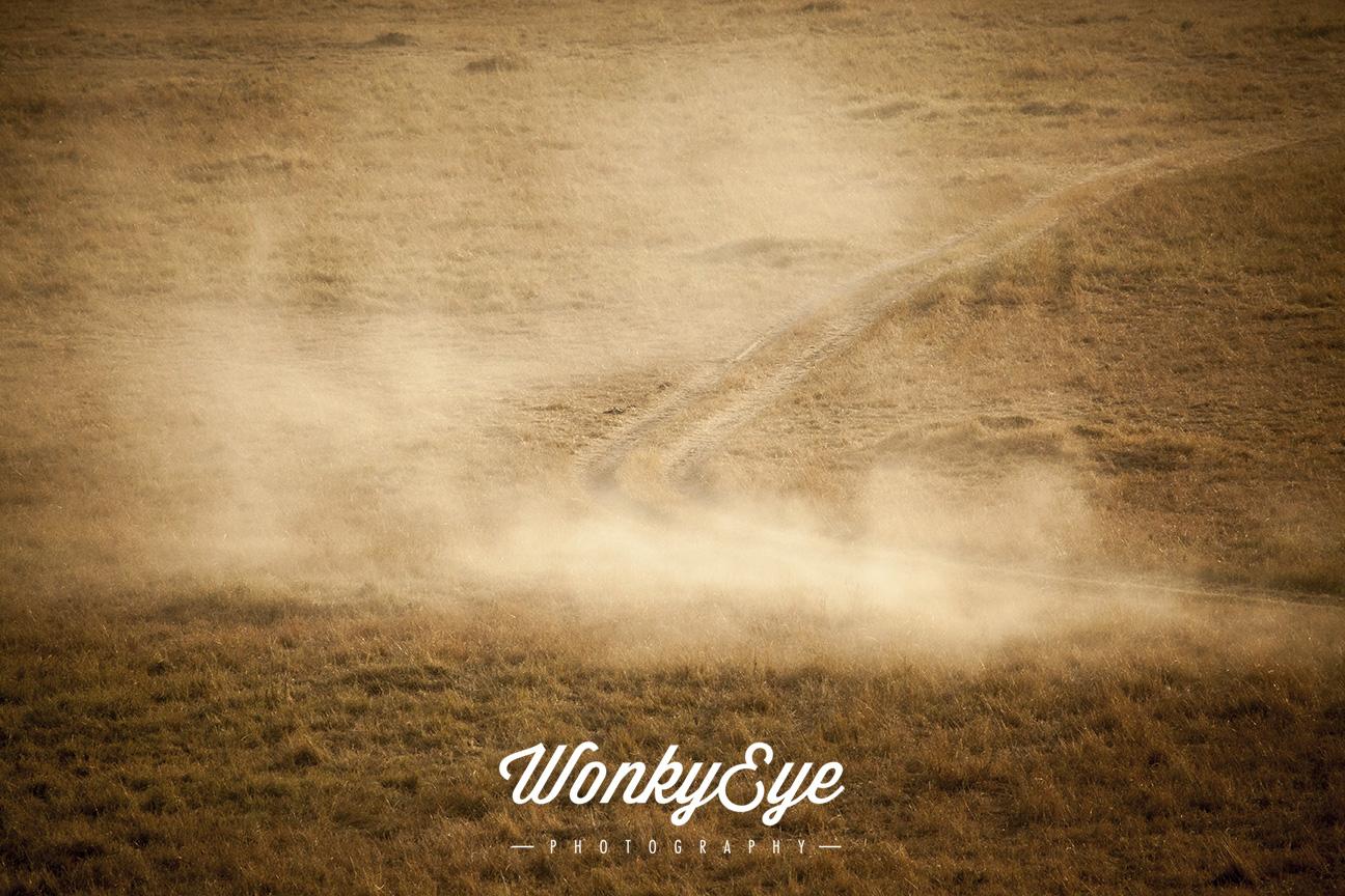 dust track.jpg