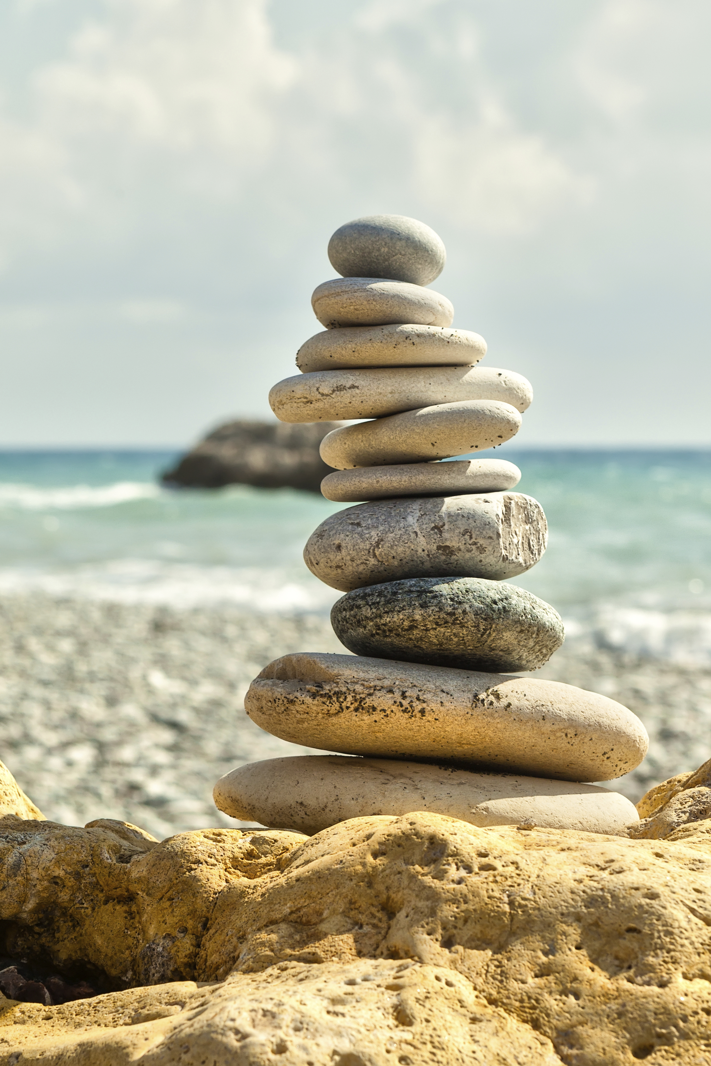 Olive Branch Chiropractic Chiropractor Courtney Stanley Meltvedt San Diego Ocean Beach 92107 1502