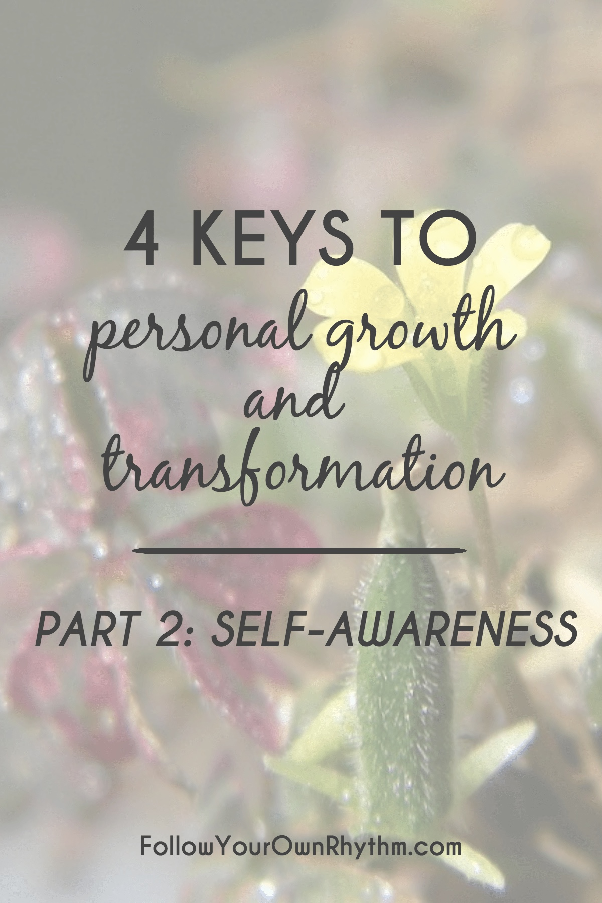 What Is Self Awareness? How To Develop Self Awareness