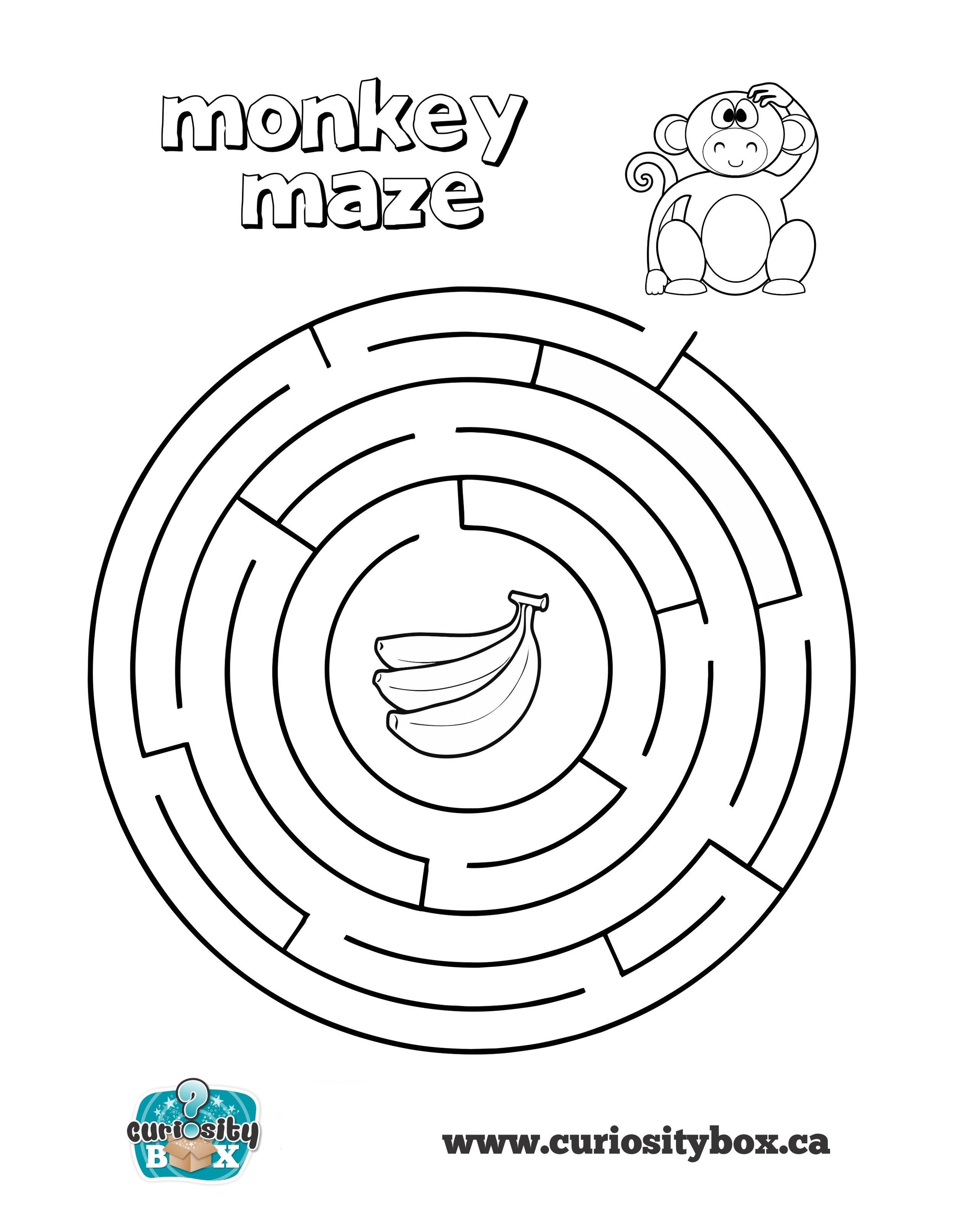 monkey_maze.jpg