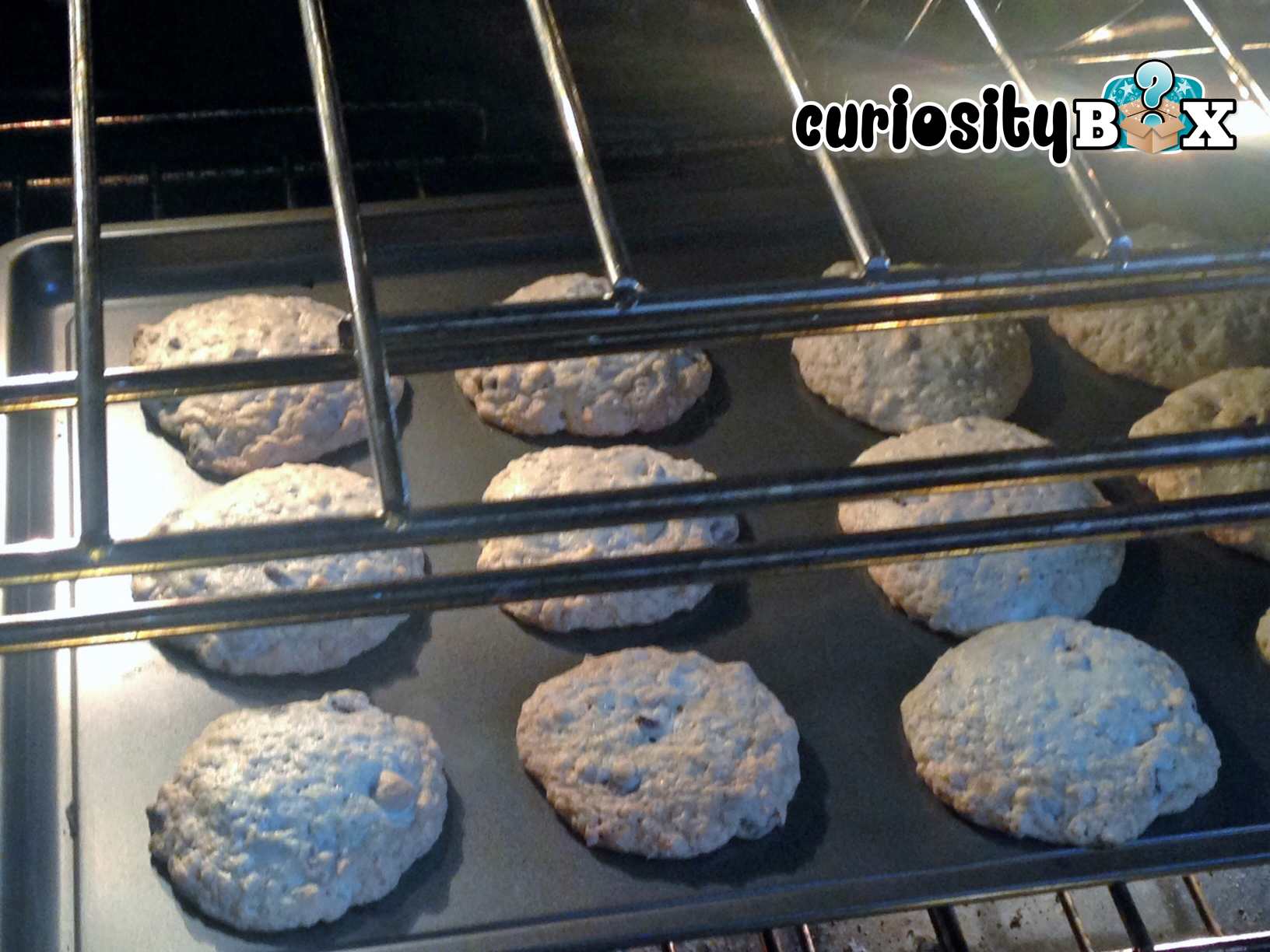 Curiosity_Box_Oatmealcookies4 copy.jpg
