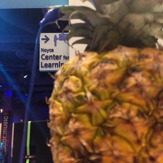 Nothing goes with pineapple quite like the Noyce Center for Learning. Thank you San Jose!! (at The Tech Museum of Innovation)