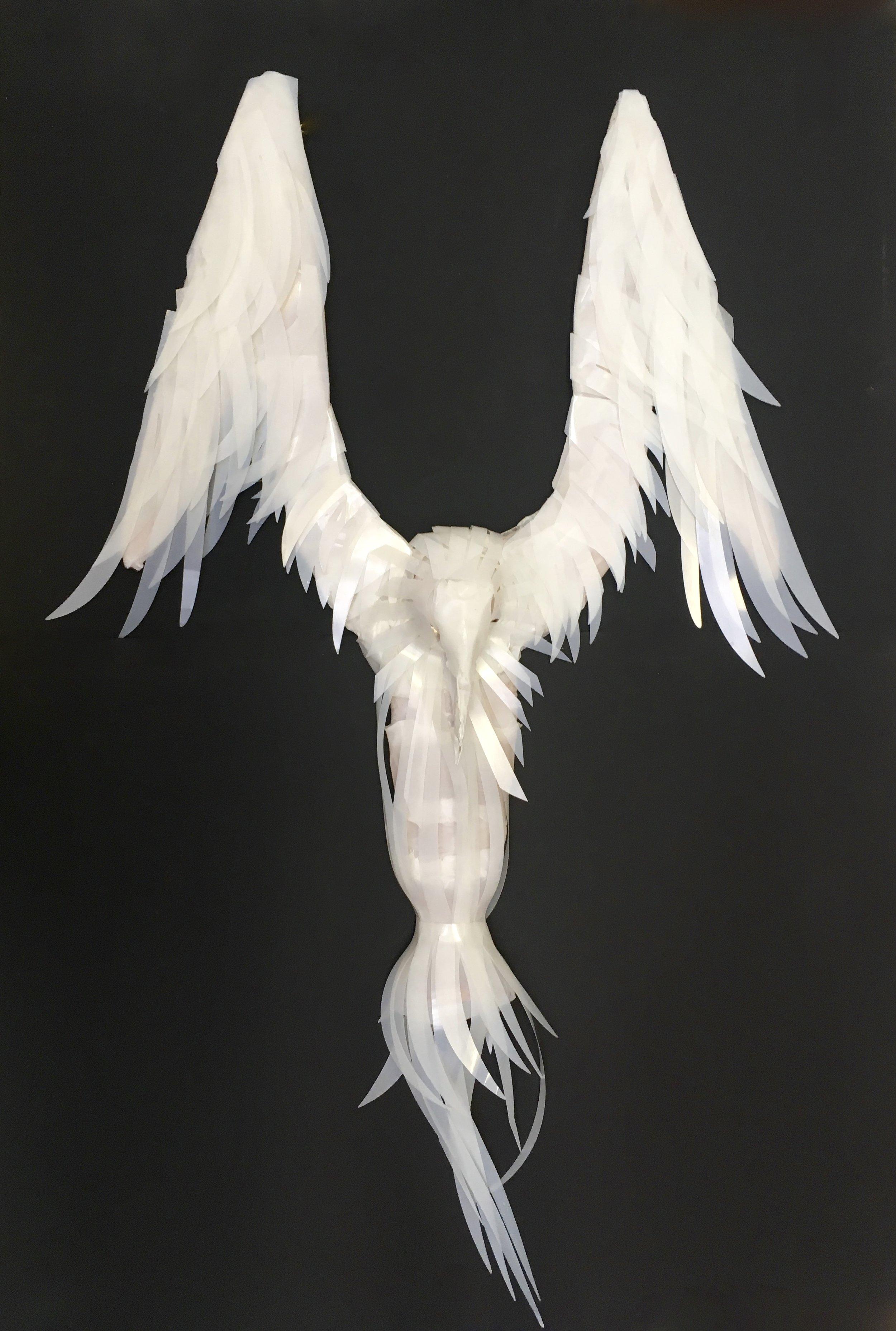 Albatross  (Milk bottles, misc plastic waste, copper wire). 80cm by 100cm