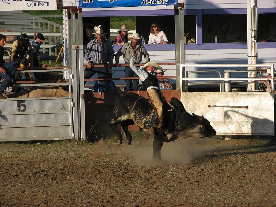 SEPTEMBER Injune Rodeo.jpg