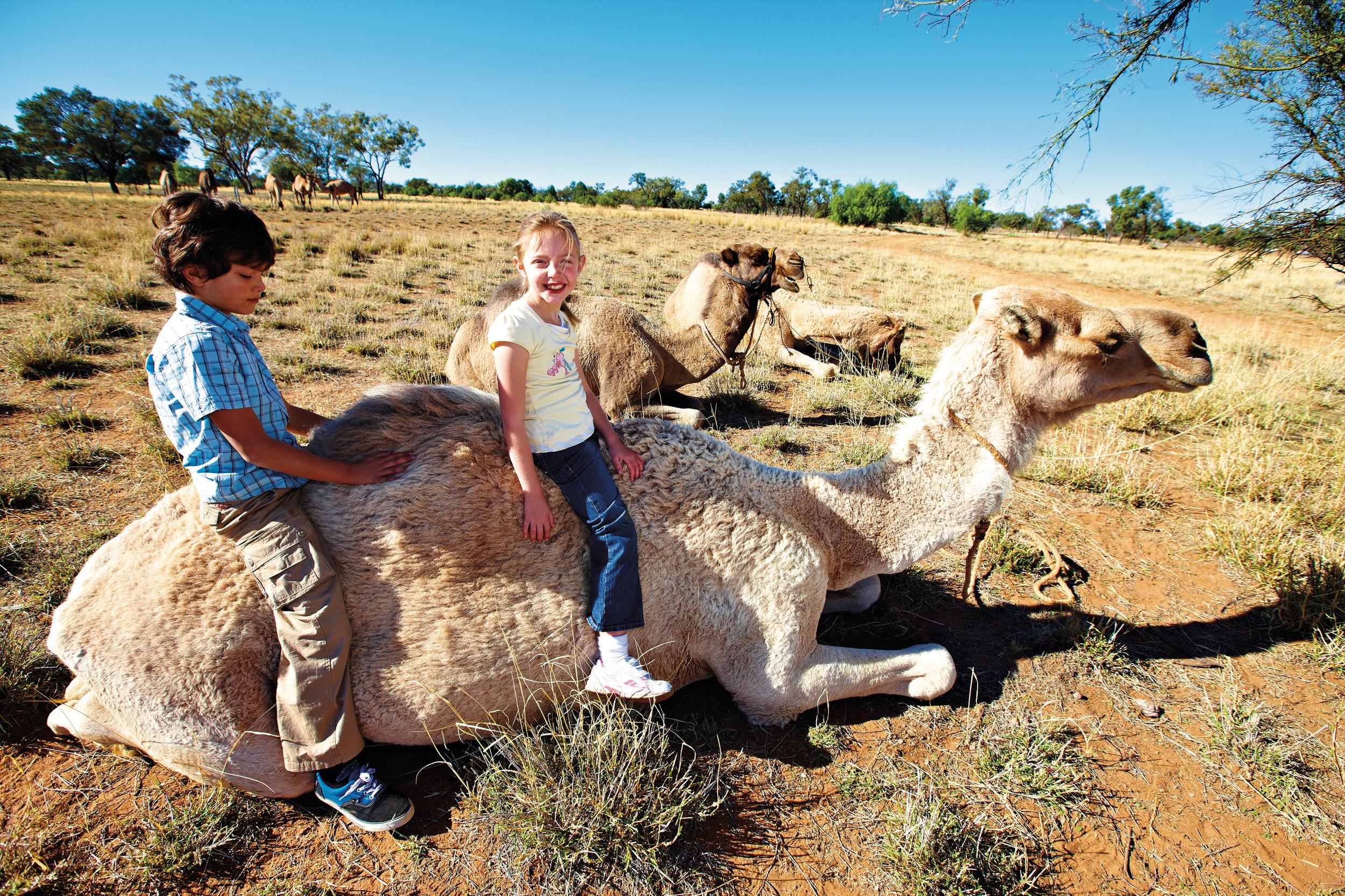 Cunnamulla - Kids and Camel.jpg