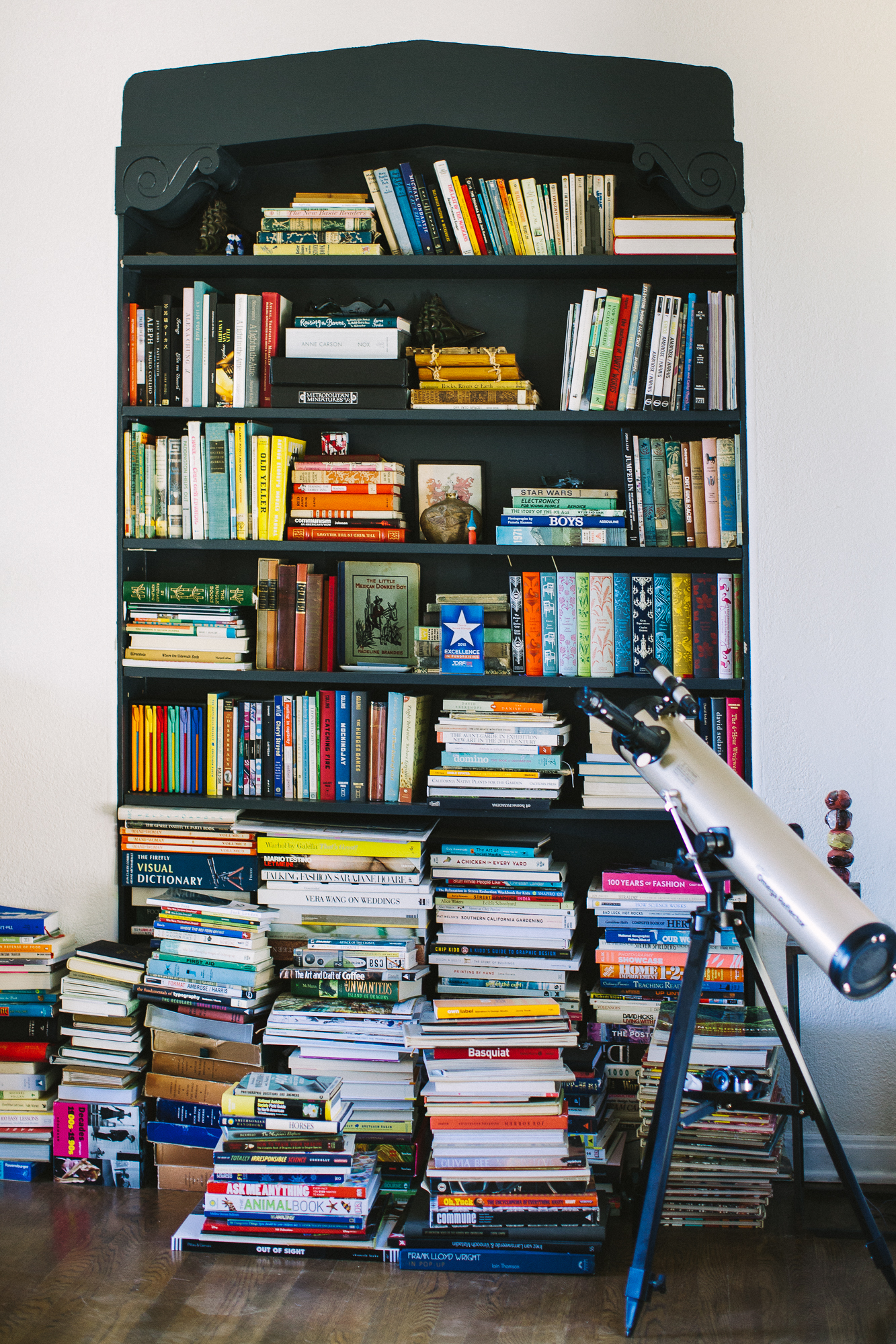 The shared family bookshelf.