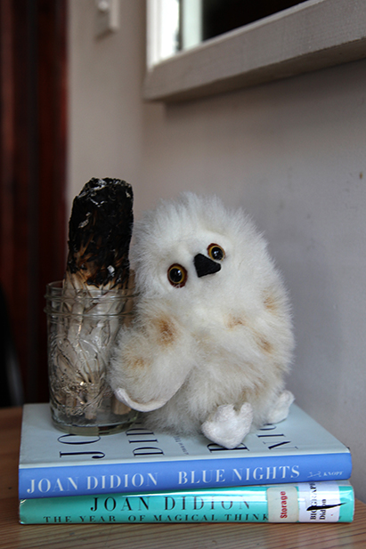 This is Baby, Amy and her husband's stuffed animal owl. This is his debut on the internet.