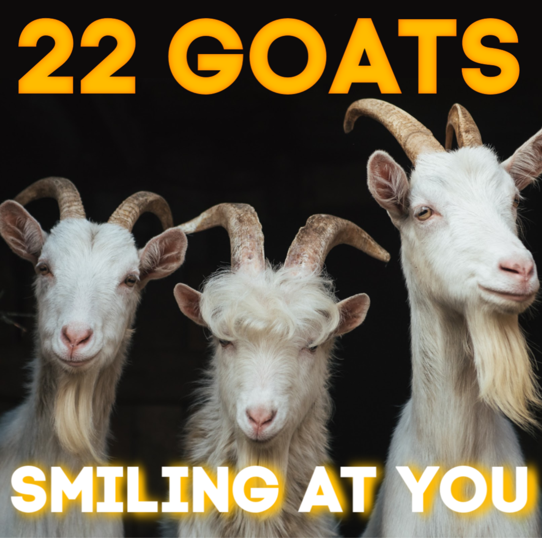 22 Goats - Smiling at you.png