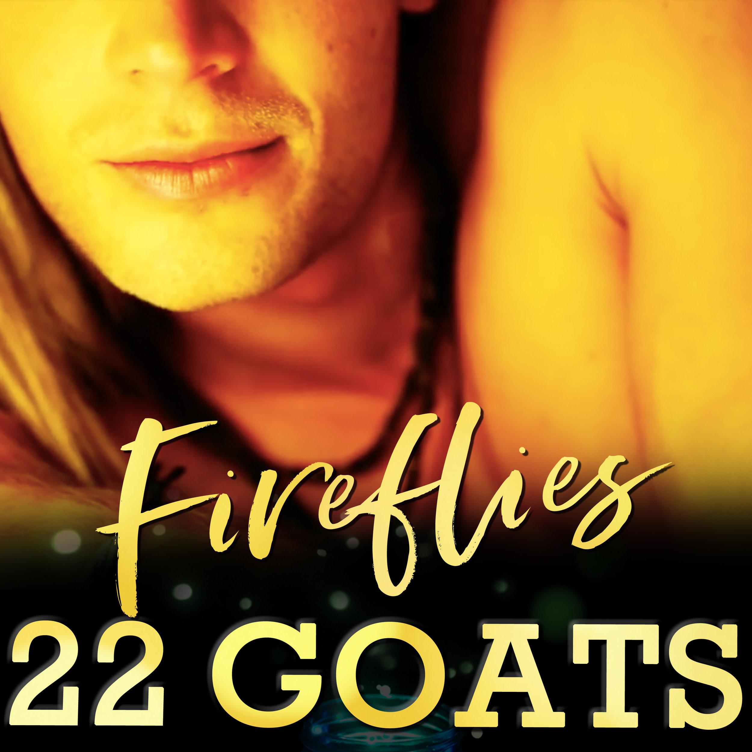 22 GOATS fireflies4.jpg
