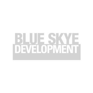 Blue-Skye-logo.jpg