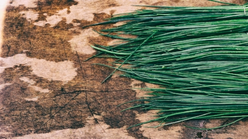 simplicity_chives