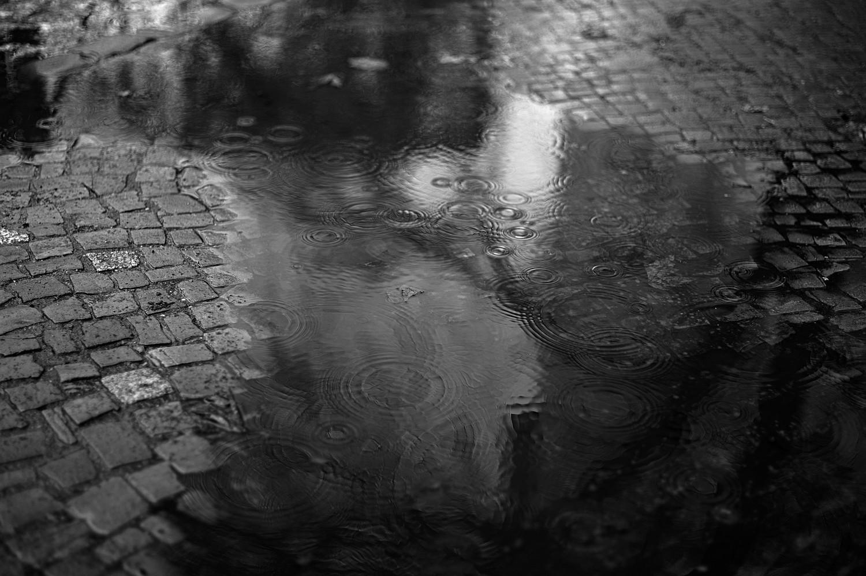 gallery_urban_056.jpg