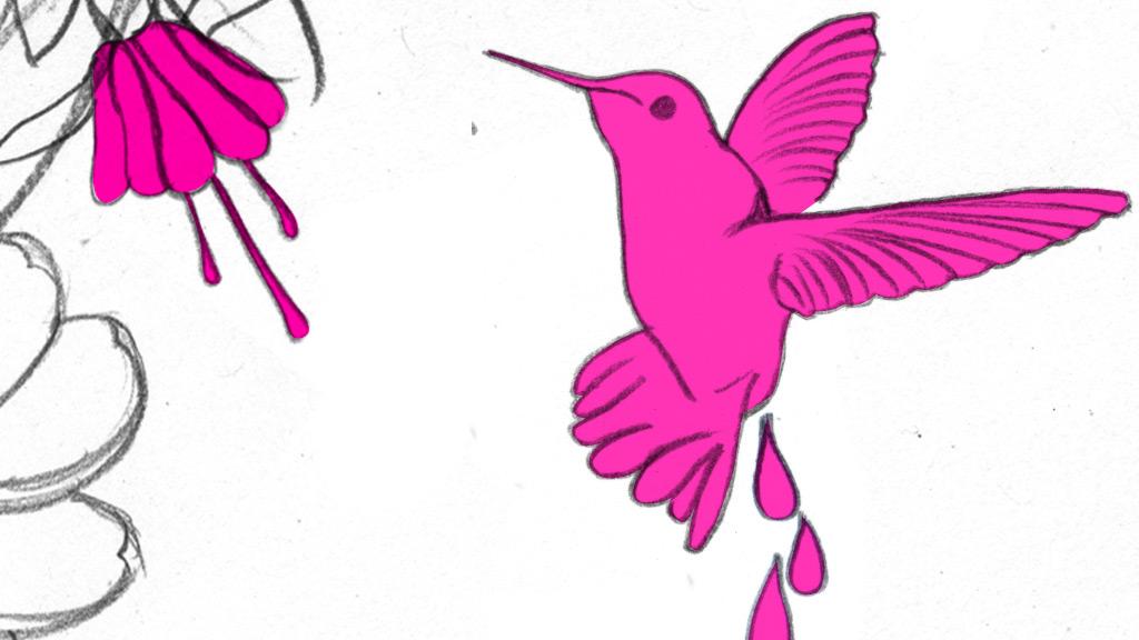 abc2_sboard_bird_fr02.jpg