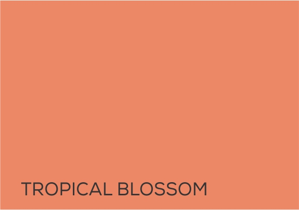 19 Tropical blossom.jpg