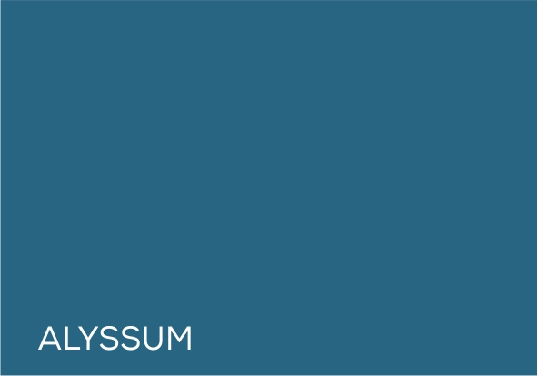 61 Assylum.jpg