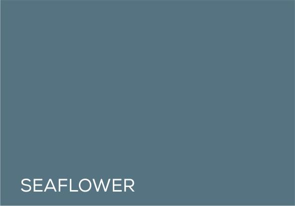 63 Sea Flower.jpg