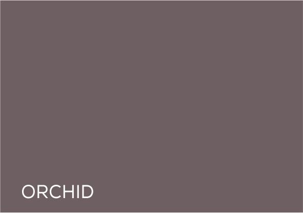 49 Orchid.jpg