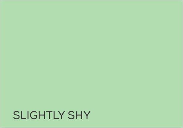 15 Slightly Shy.jpg