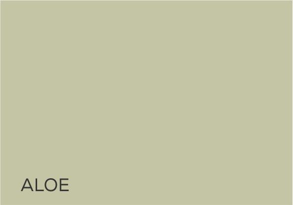 19 Aloe.jpg