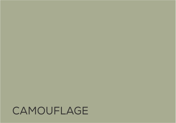 25 Camoflage.jpg