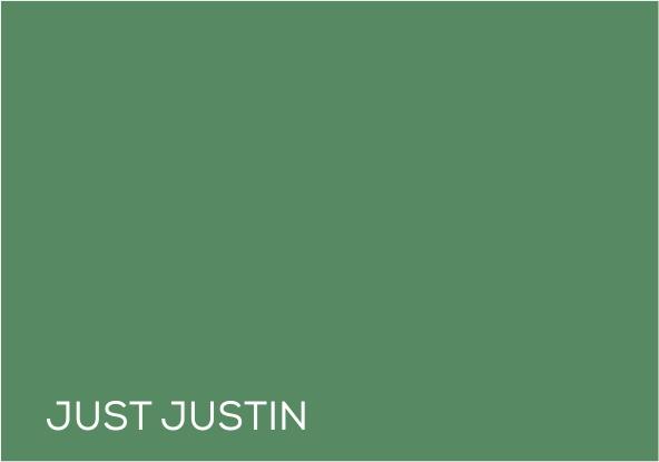 41 Just Justin.jpg