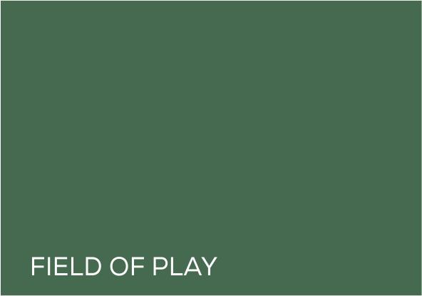 50 Field of Play.jpg