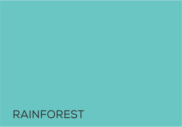 10 Rain Forest.jpg