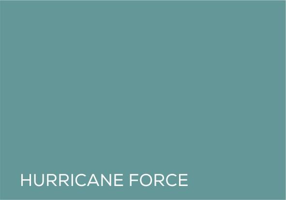 14 Hurricane force.jpg