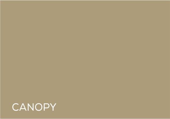 64 Canopy.jpg