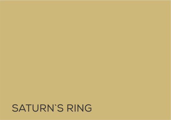 20 Saturns Ring.jpg