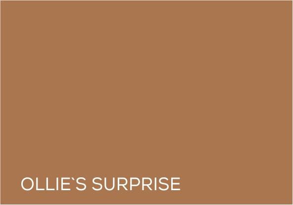 29 Ollies Surpris e.jpg