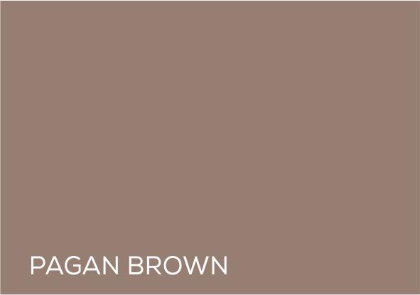 22 Pegan brown.jpg