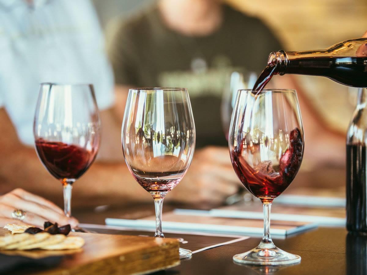 WINE TASTING IN A VINEYARD