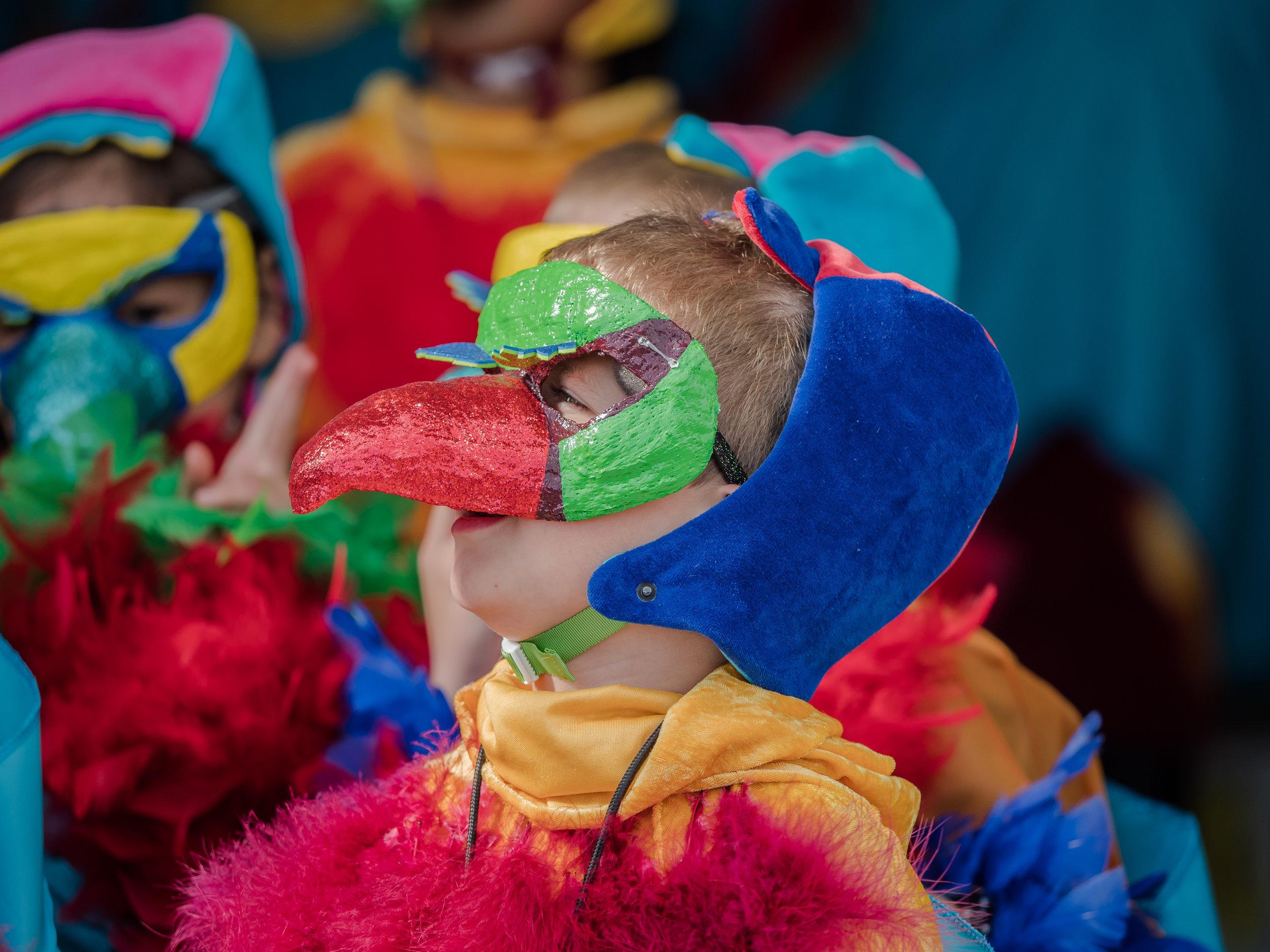Birdhead  // Hop Pageant 17