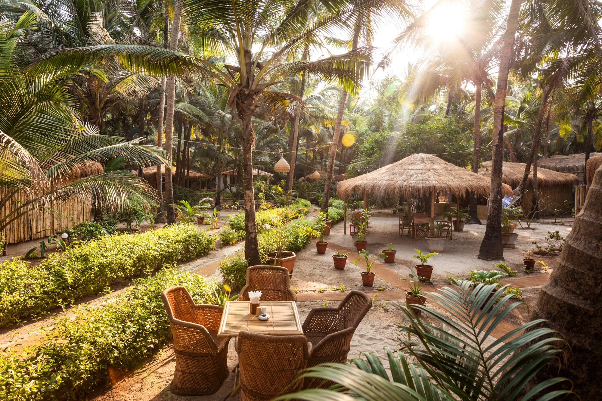 Palm Grove, Goa