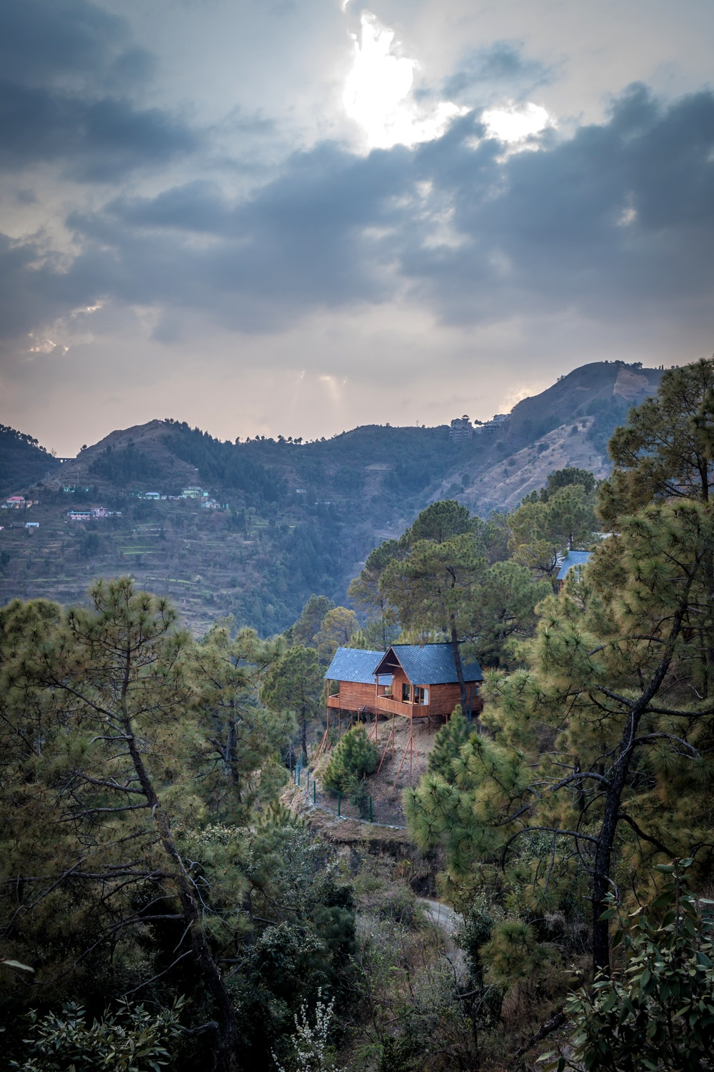Suro Treehouse Resort, Himachal Pradesh