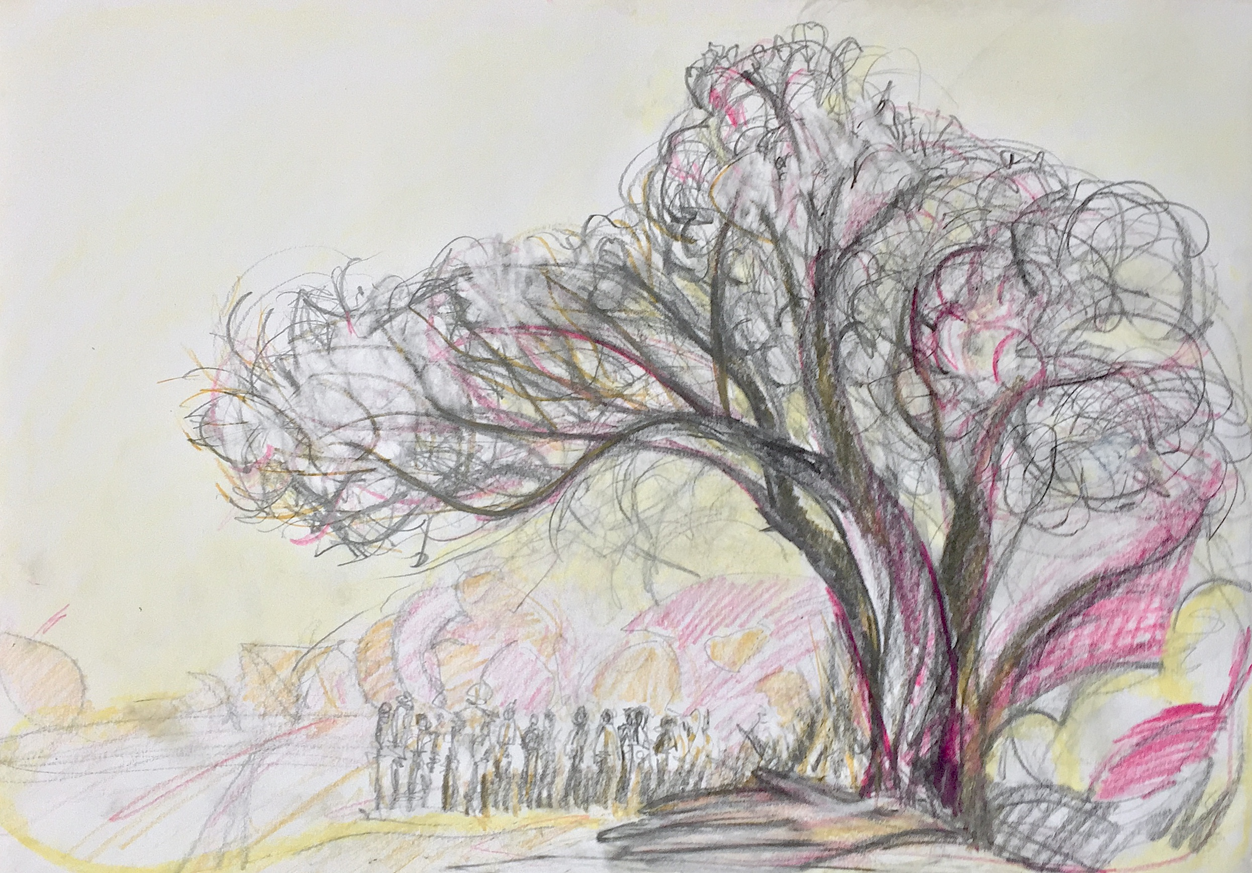 Stop HS2 - Under The Oldest Pyrus In The Country