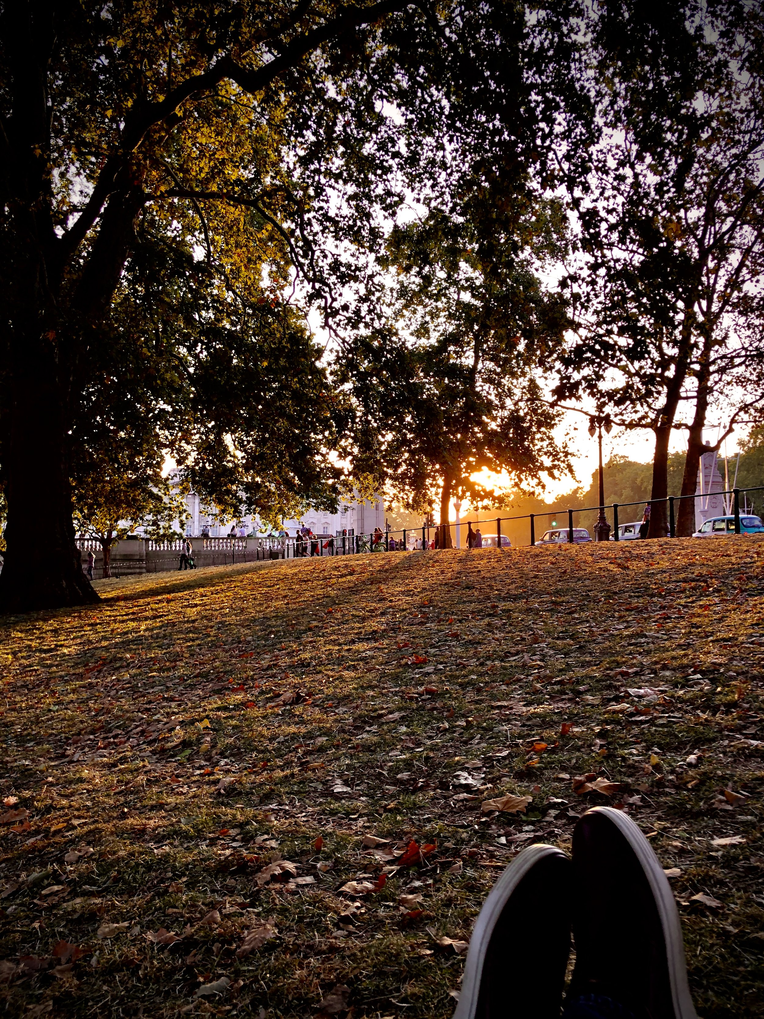 The start of autumn, viewed from St. James' Park