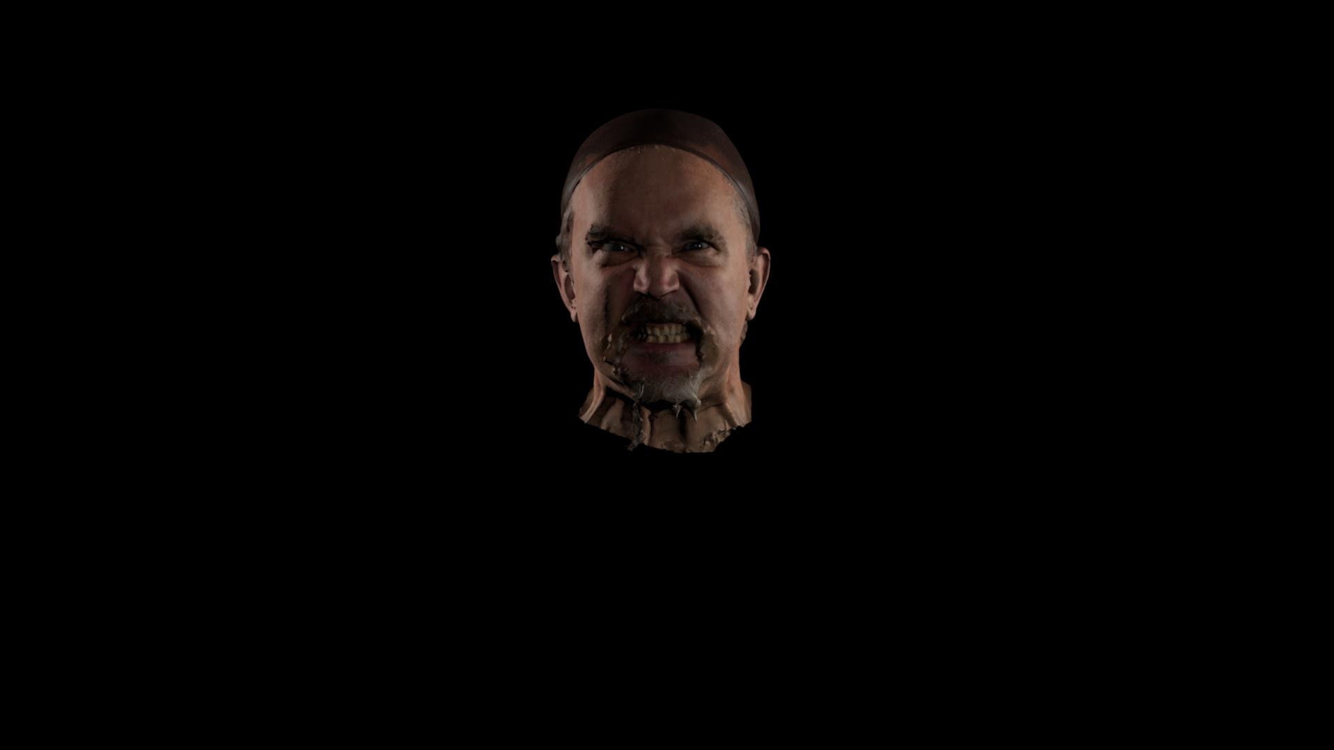 Male viking head scan
