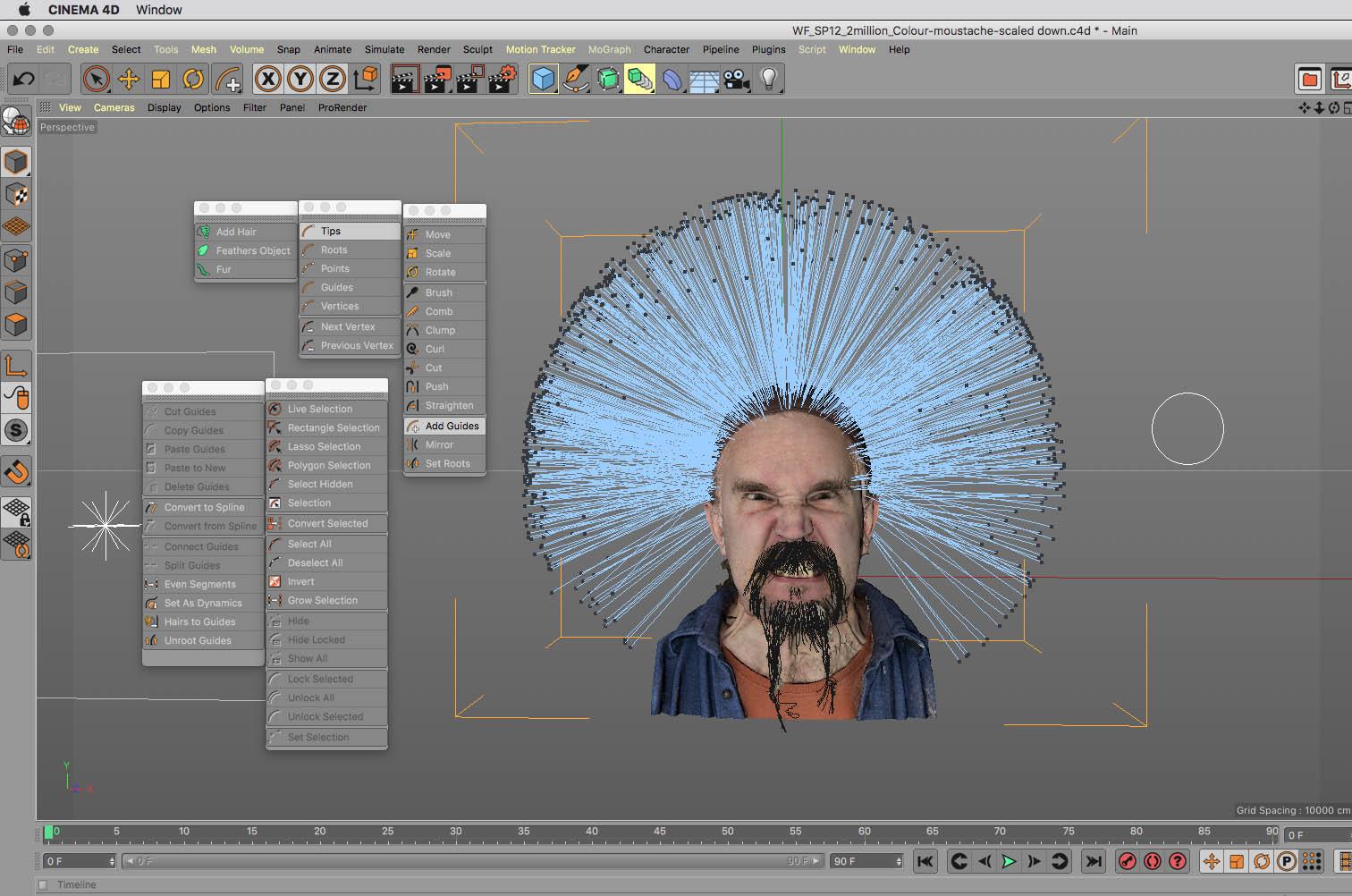 Hair design (work-in-progress)