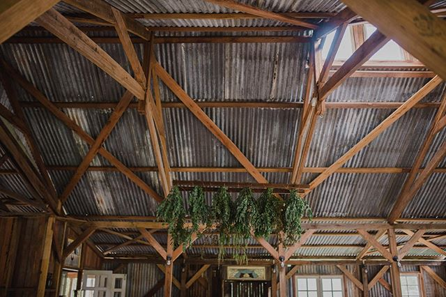 It's all in the details. Wood beams, tin roof, rustic ladder and greenery. Rustic barns are fun to style. . 📷 @leahmoorephoto  @eaglesrestweddings #coffsharbourweddings #coffscoastwedding #vallawedding #weddinghire #dailyweddinginspiration #rusticwedding #barnwedding