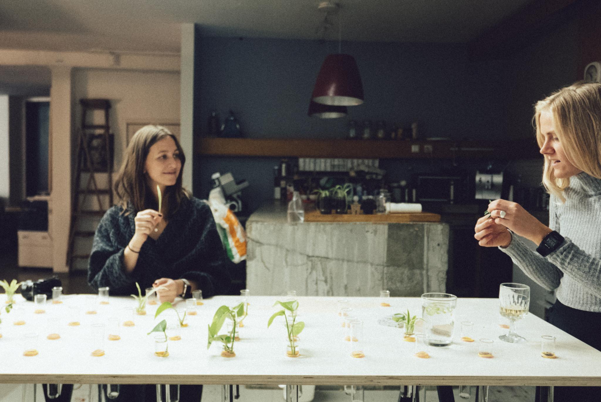 Etter stengetid gjør Jenny og Marte regnskap over stiklingene som ingen ville ha med seg hjem.