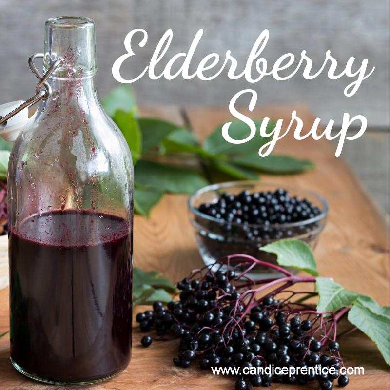 Elderberry Syrup Meme.png
