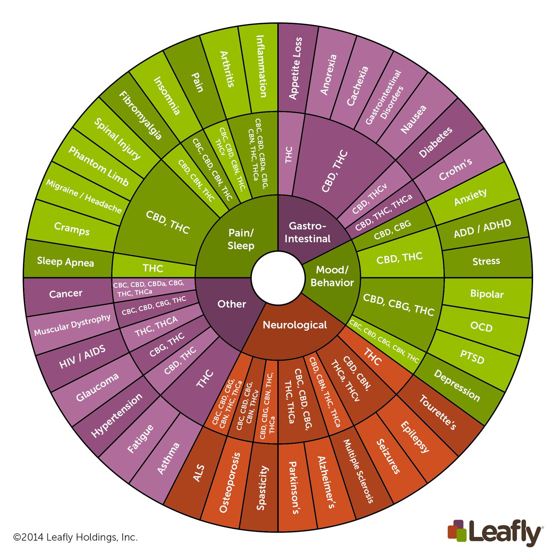 leafly cannabinoid wheel